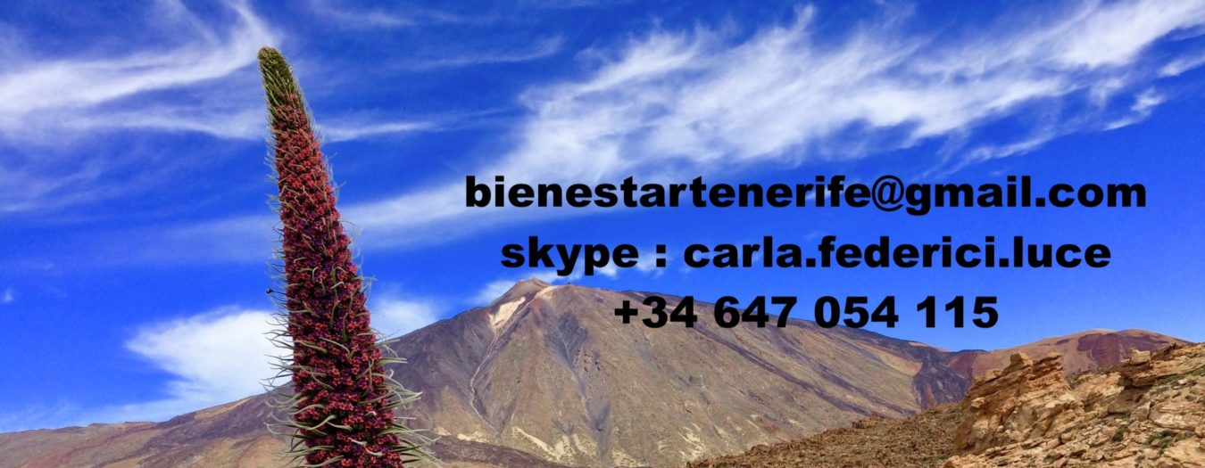 Bienestar Tenerife